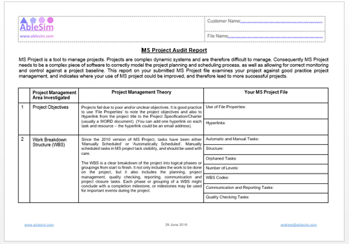 MS Project Audit Report
