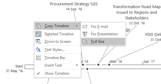 MS Project Timeline