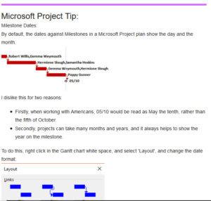 Microsoft Project Tip