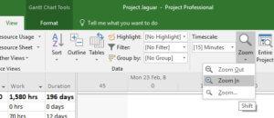 Microsoft Project Zoom Icon