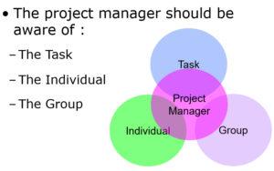 Task Individual Team