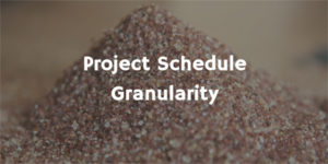 Project Granularity