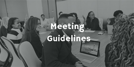Meeting Guidelines