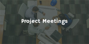 Project Meetings