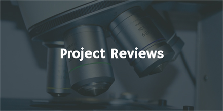 Project Reviews