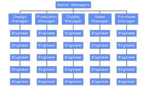 Functional Organisation